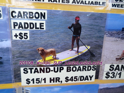 2011年8月 Waikiki Rental BoardでSUP(スタンドアップパドル)
