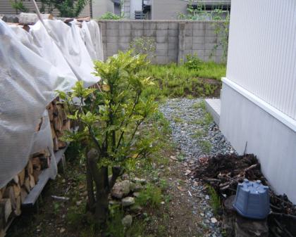 HDPEPhoto0001_convert_20110222154150.jpg