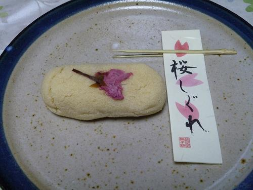 桜しぐれ2