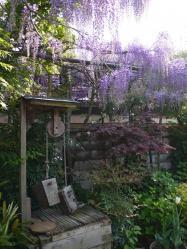 梶本家の石庭3