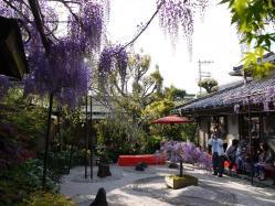 梶本家の石庭2