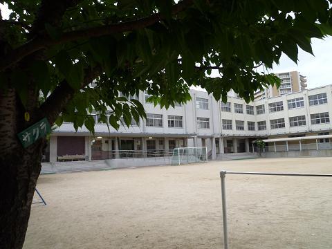 西九条小学校