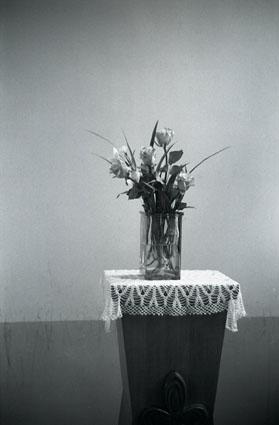 津和野カトリック教会 花