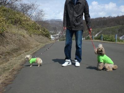 厚田で散歩1