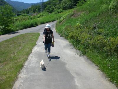 6月の五天山公園3