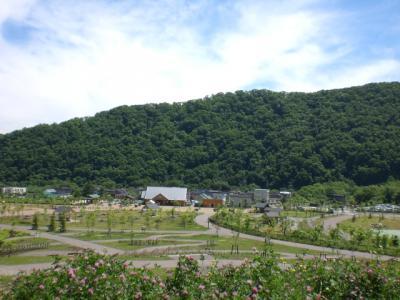 6月の五天山公園6