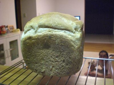 2度目のパン1