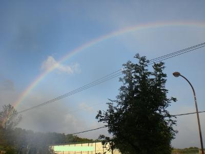 虹だねぇ~♪
