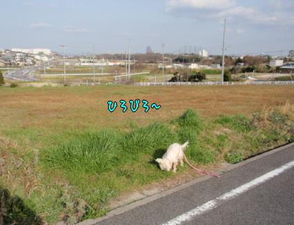 image220319.jpg