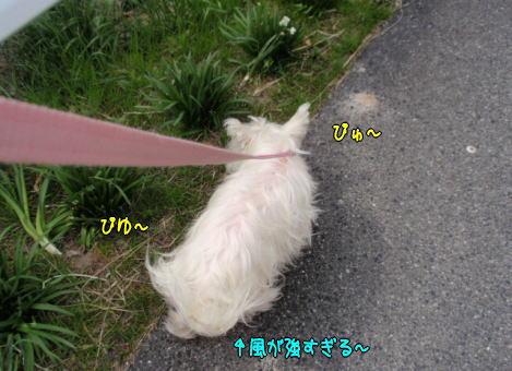image220321.jpg
