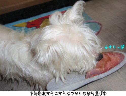 image220401.jpg