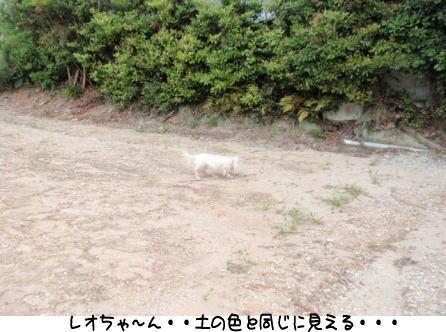 image220506.jpg