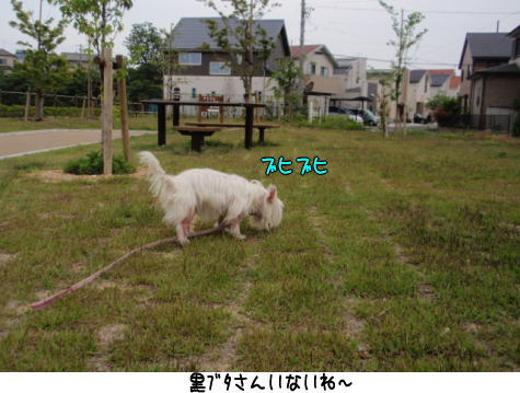 image220522.jpg
