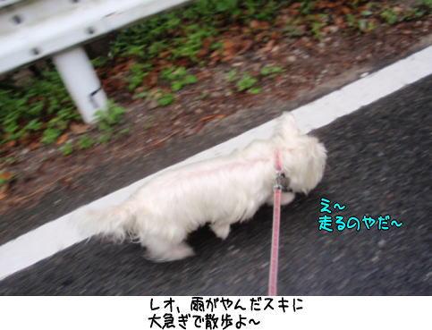 image220618.jpg