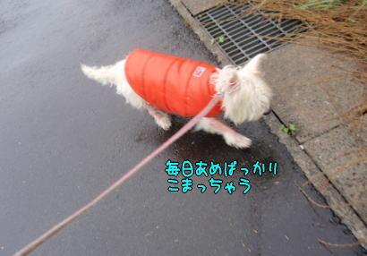 image220714.jpg