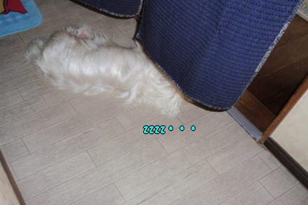 image220726.jpg