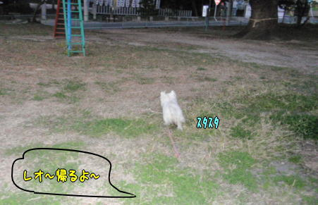 image221115.jpg