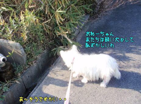 image221202.jpg