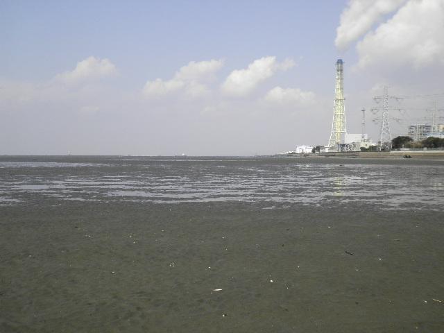 YR川河口