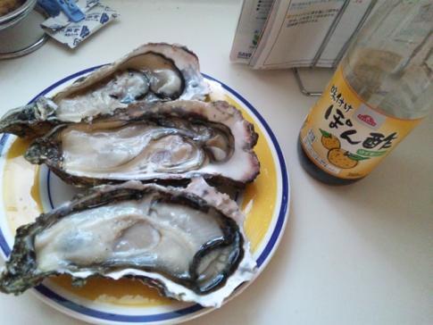 殻いっぱいの牡蠣