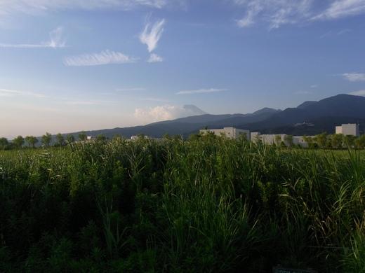 アクアプラザ遊水地 - 2009/08中旬