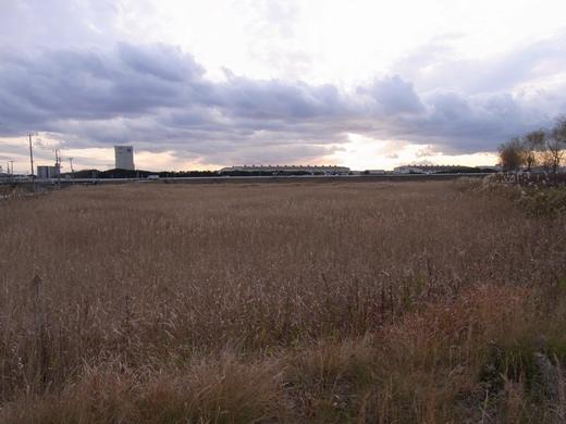 アクアプラザ遊水地 - 2009/12中旬