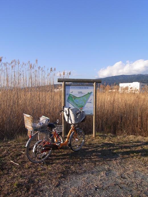 アクアプラザ遊水地 - 2010/01上旬