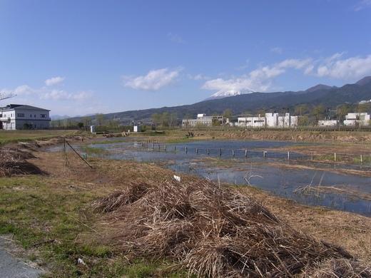 アクアプラザ遊水地 - 2010/03下旬