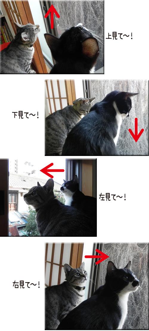 0112_2.jpg