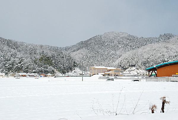 2010020602.jpg