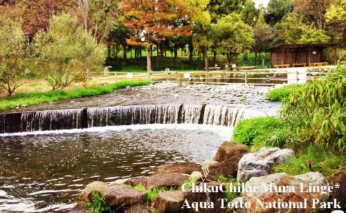アクアトト公園4☆