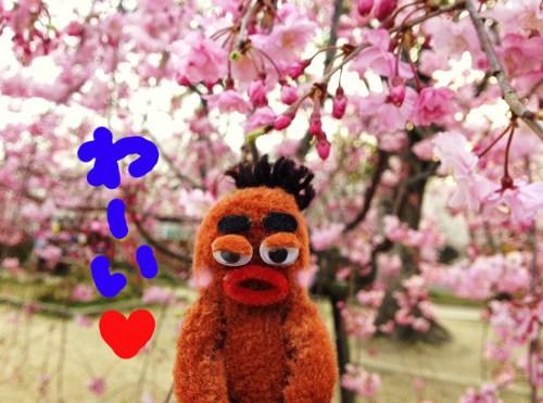 桜祭り14★