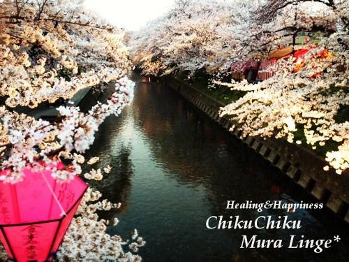 桜祭り4★
