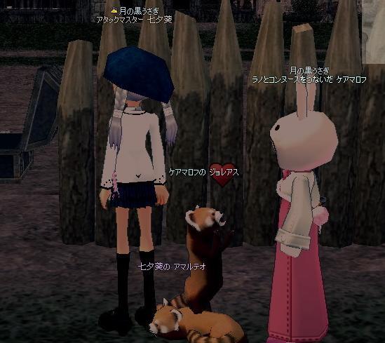 mabinogi_2009_10_16_006.jpg