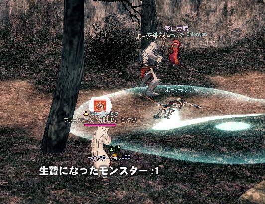 mabinogi_2009_12_26_001.jpg