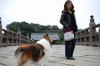 石橋記念公園2