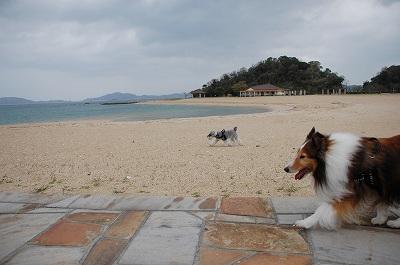 パールサンビーチ