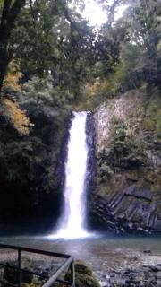 浄連の滝!水がキレイ。超。