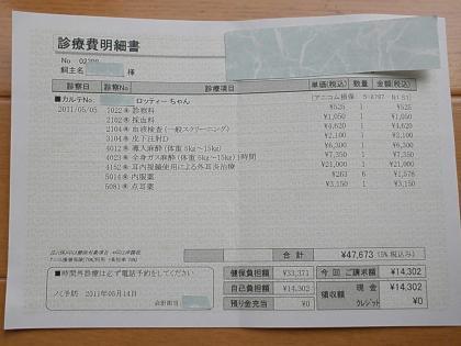 P5100078_convert_20110510114713.jpg
