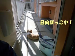 2012032316.jpg