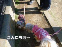 2012032708.jpg