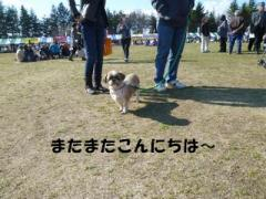 2012032709.jpg