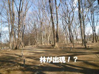 2012032717.jpg