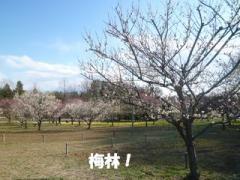 2012032721.jpg