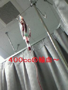 1月26日輸血 001