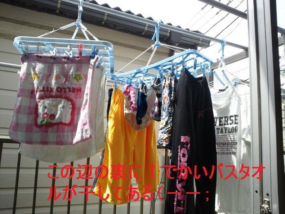 洗濯物5・9 001