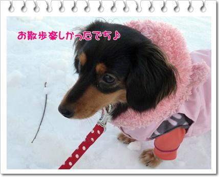 雪散歩楽しかったでち