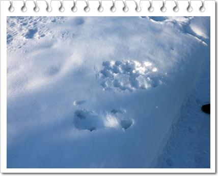 メイの雪跡
