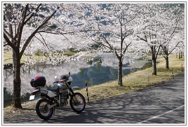 13年3月26日 下北山ツーリング (7)