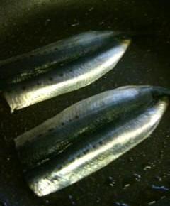 胴の短いウナギ丼9